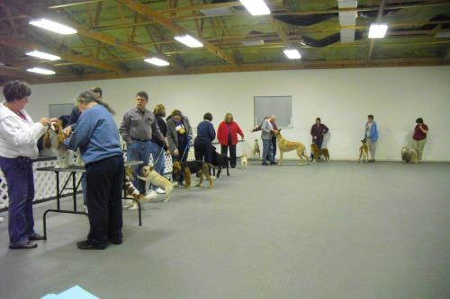 Classes offered by the Champaign Illinois Kennel Club